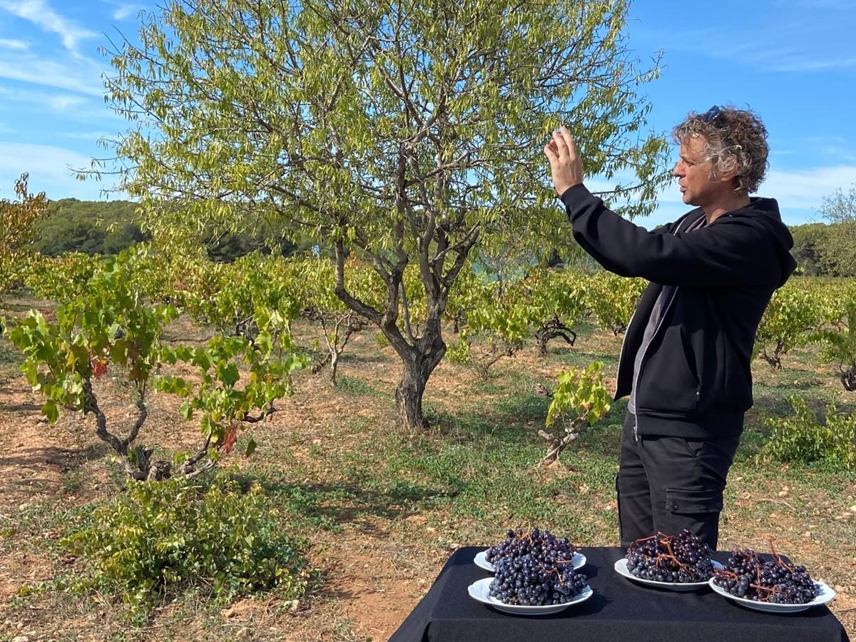 Joan Soler, enòleg de Cultivare.